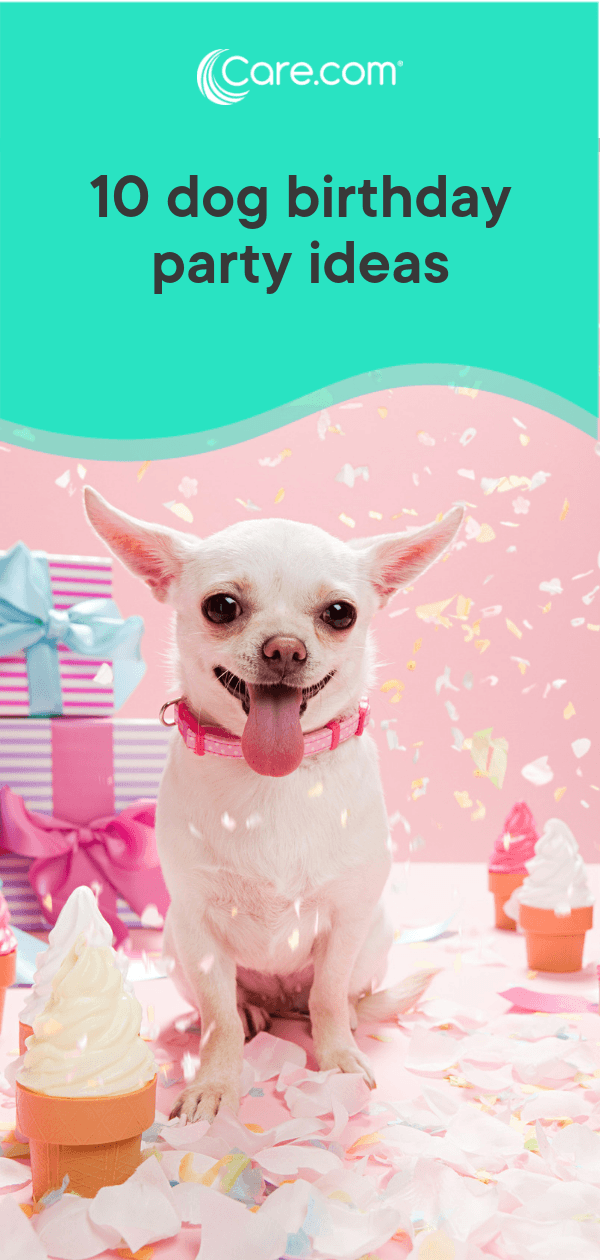 10 Totally Paw Some Dog Birthday Party Ideas Care