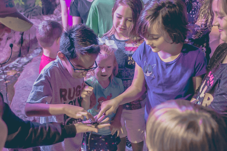 the 10 best places for kids birthday parties around austin care com