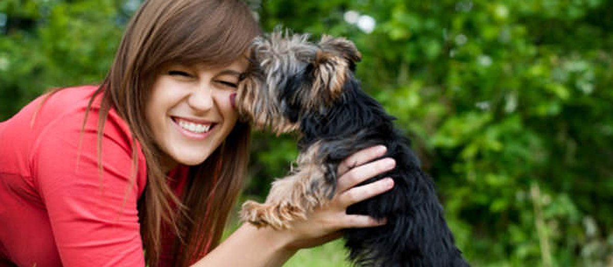 Get Trained In Pet First Aid And Cpr Care