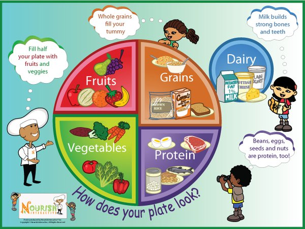 How do I teach my child about the food groups? - Care.com Community