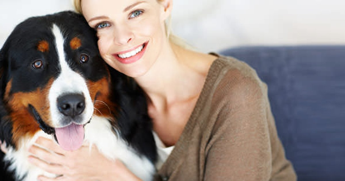Pet Sitters And Napps Care