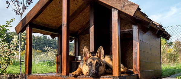20 of the best free diy dog house plans on the internet Lean to dog house plans
