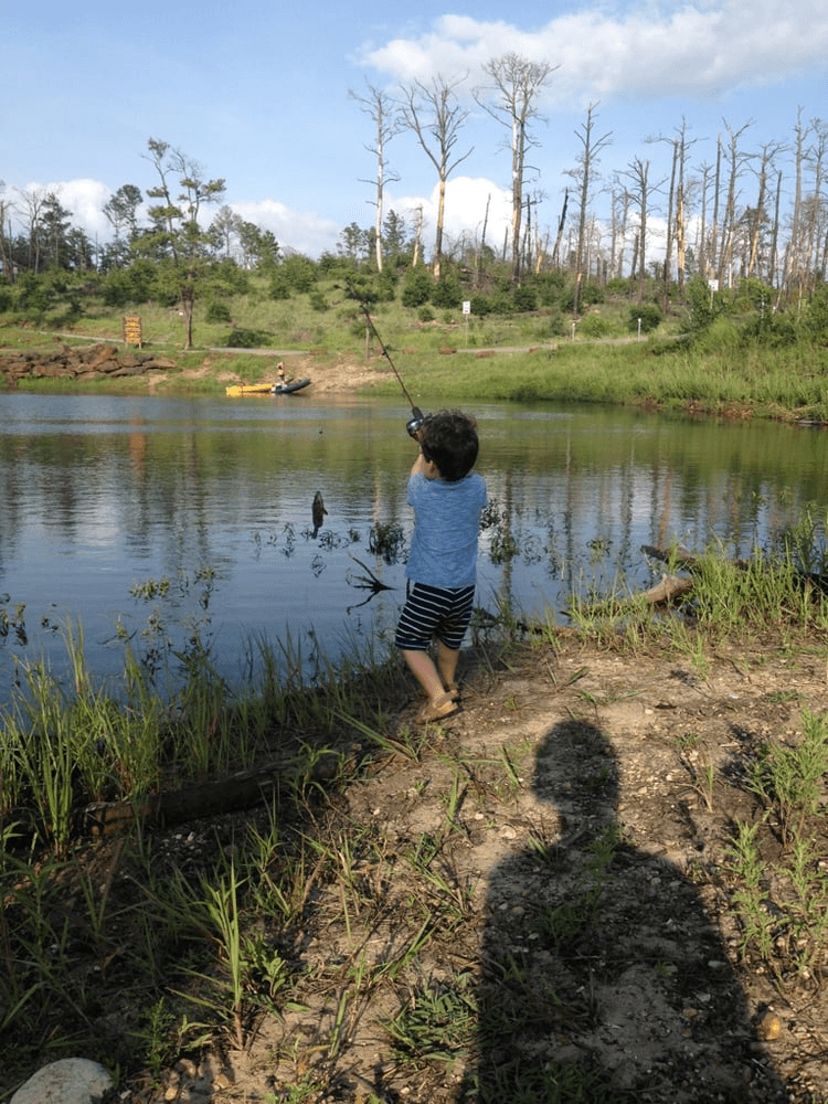 the 10 best kid friendly fishing spots in the austin area