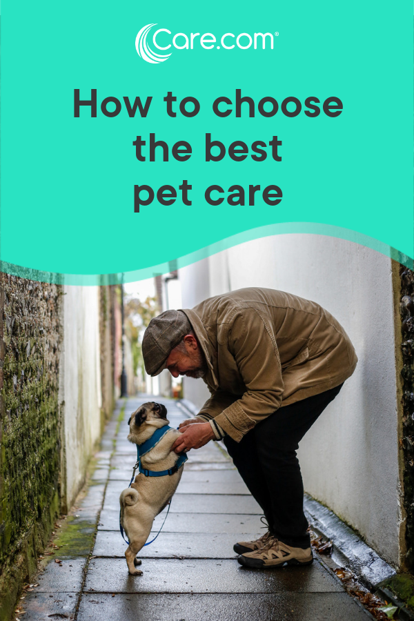 Choosing Pet Care That's Right For You And Your Pet - Care com