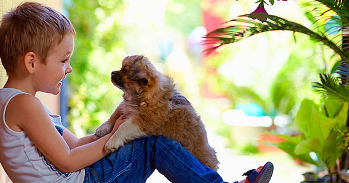 Best Pets For Kids At Every Age And Stage Care Com