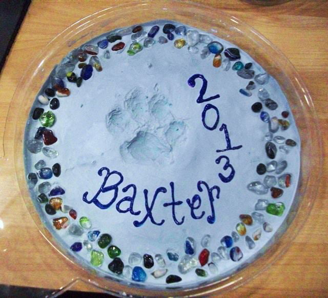8 Easy Diy Dog Paw Print Art Projects - Care com