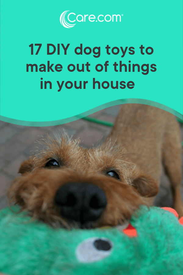17 Diy Dog Toys You Can Make From Things In Your House Care Com