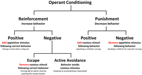 """What Is """"Punishment""""? Definition and Examples"""