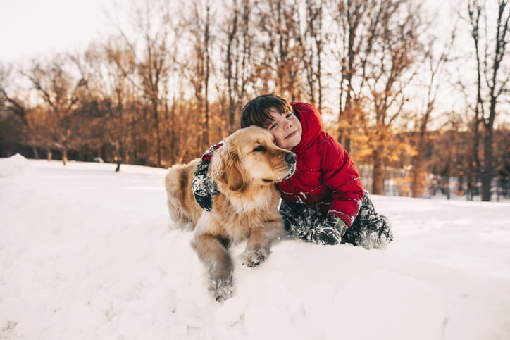 10 Tips For Keeping Your Pet Safe This Winter - Care com
