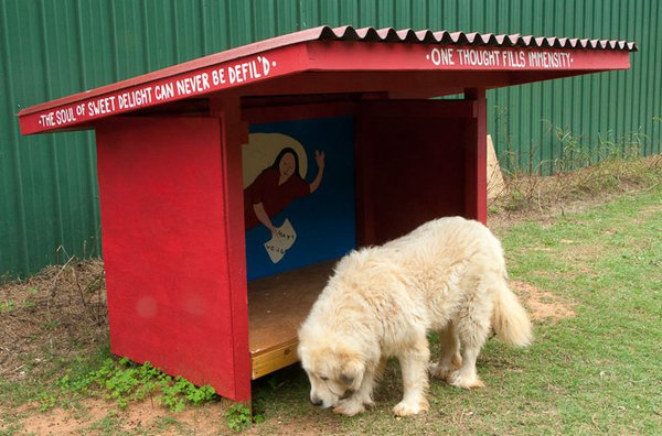 Lean to dog house lean to dog house plans for Lean to dog house plans