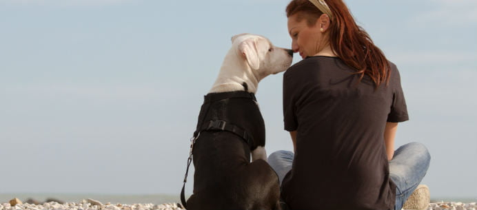 10 Reasons Pet Sitters Love Their Jobs - Care.com