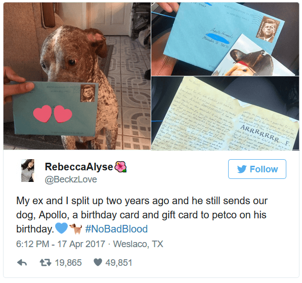 Man Continues To Send Birthday Cards To Dog After He And Wife Split