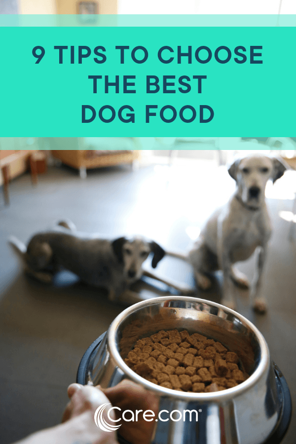 best grocery store dog food 2017 read next homemade dog treats expert tips for choosing the right brand of healthy dog food