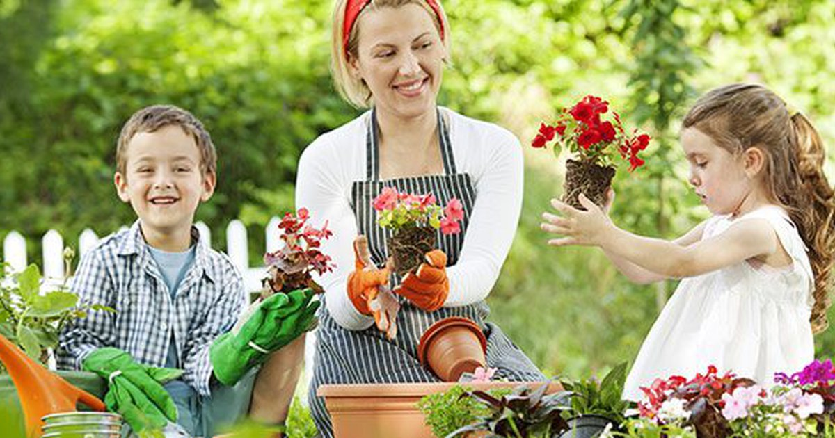 8 Fun Summer Activities For Family Child Care Programs Care Com